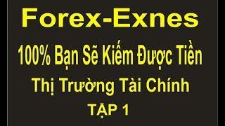 Forex-Exnes TẬP 1,chiến thắng 100%,nếu bạn làm đúng nguyên tắc, nguyên tắc để thành công trong Forex