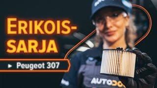 Kuinka vaihtaa polttoainesuodatin PEUGEOT 307 SW -malliin [AUTODOC -OHJEVIDEO]