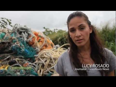 Great Pacific Garbage Patch Spoils Hawaii Island Beach