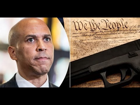 New Federal Gun Permit Bill: Red Flag, Registration, and MORE!!