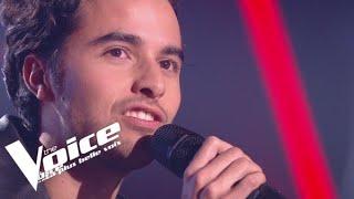 Stéphane Eicher  – Déjeuner en paix |Romain| Blind Audition |The Voice France 2020
