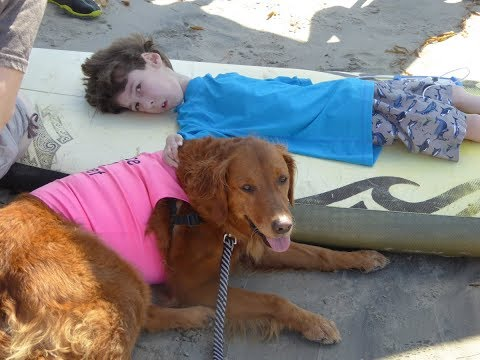 "Surf Dog Ricochet ""Surfs"" W 6 Yr Old Severely Disabled Boy"