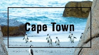 My 4 days in Cape Town!