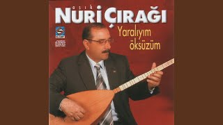 Gambar cover Türkülerimiz