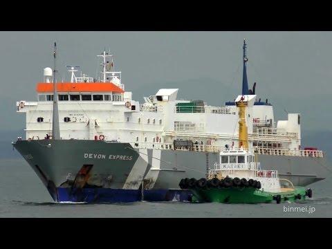 DEVON EXPRESS - VROON LIVESTOCK livestock carrier