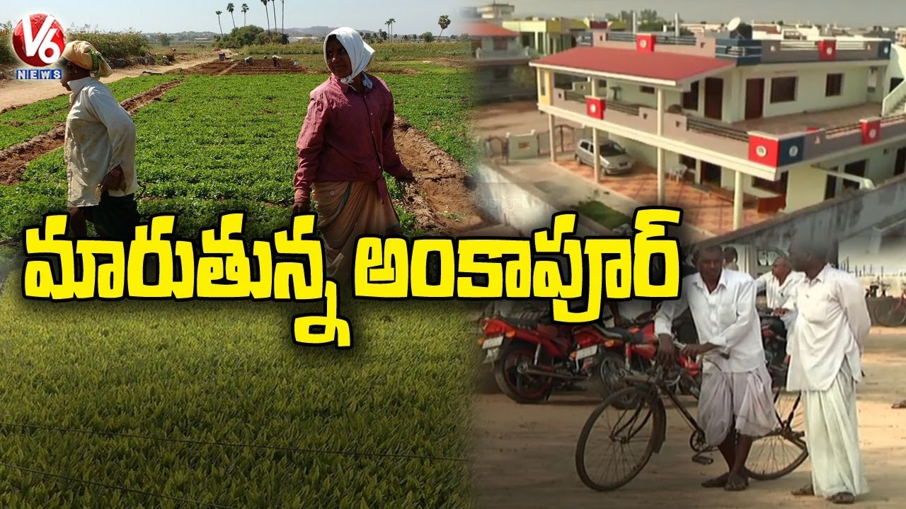 Download మారుతున్న అంకాపూర్   Special Story On Ideal Village Ankapur   Nizamabad   V6 News