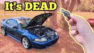 Here's What I Found Inside my $500 Mustang GT's Engine (I've never seen anything like this)