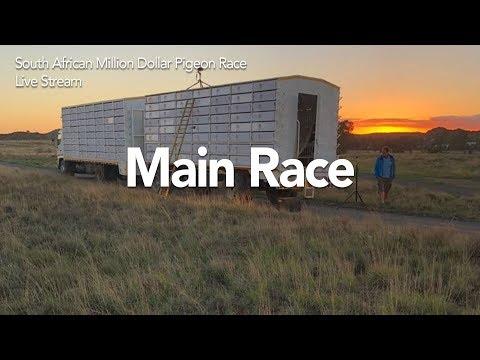 SAMDPR 2018 - Main Race Day 2