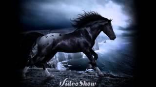 Красивые картинки с лошадьми
