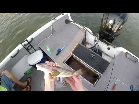 Catching A Bunch Of Whiting And A Shark Beaufort SC Fishing