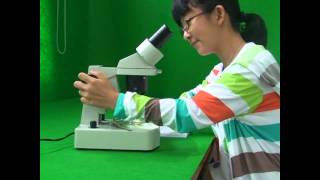 초등5학년 작은생물의 세계 4차시 현미경 사용법