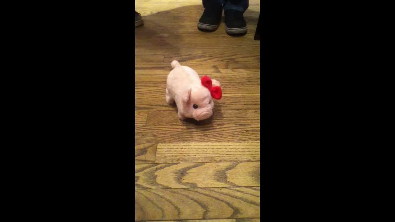 Cute Piggy Toy At Cracker Barrel For My Birthday C Youtube
