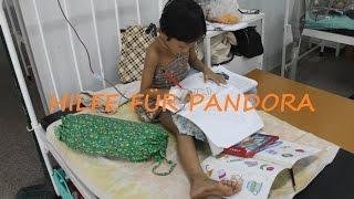 Hilfe für Pandora