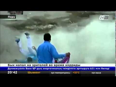 В Перу бык напал на зрителей во время корриды
