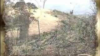 21.วิกฤตป่าไม้ไทย
