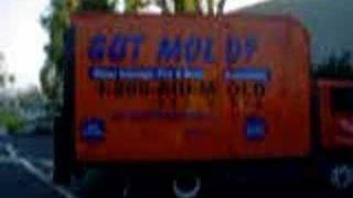 Mold Removal Miami 888-243-6653