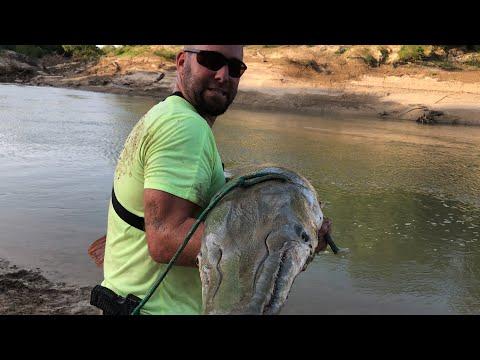 Monster Alligator Gar Fishing Part 1