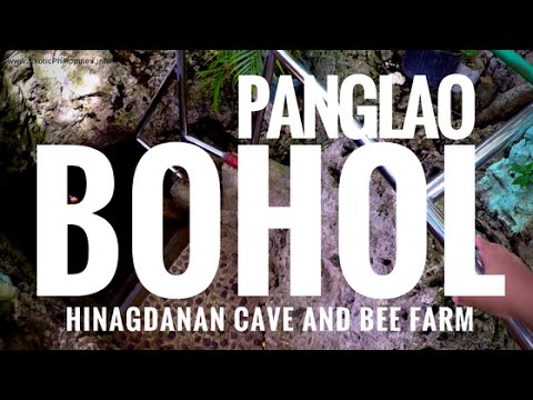 Panglao Bohol Tour (Hinagdanan Cave and Bee Farm) - G Vlogs #38