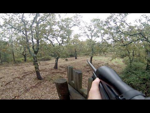 Monteria en Caceres - Octubre 2014 - Videos de Caza