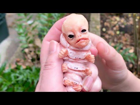 i found an alien..