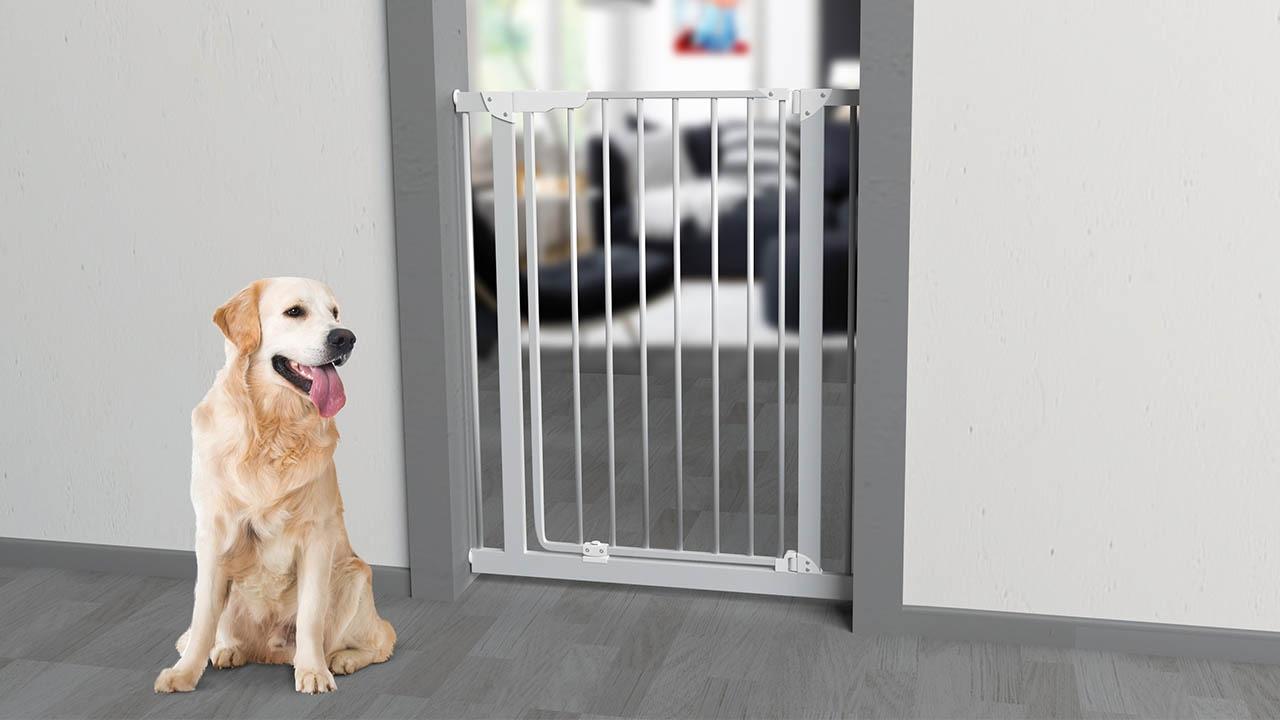 Barrera de seguridad para perros mara youtube for Puerta seguridad perros