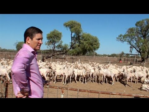 Drought Appeal - Lawrence Springborg urges generous support