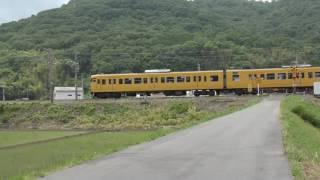田園地帯を走る 客車・貨物列車 トワイライトエクスプレス瑞風 岡山市東区 2017 6月21日 撮影