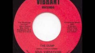 Download Soul Vibrations