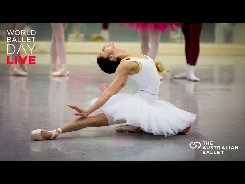 World Ballet Day 2020 Highlights | The Australian Ballet