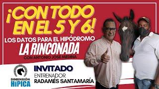 Arrea y pega con los últimos datos para La Rinconada / Domingo 2982021