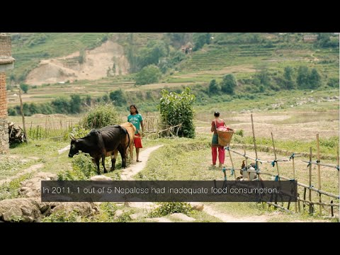United Nations, World Food Programme video