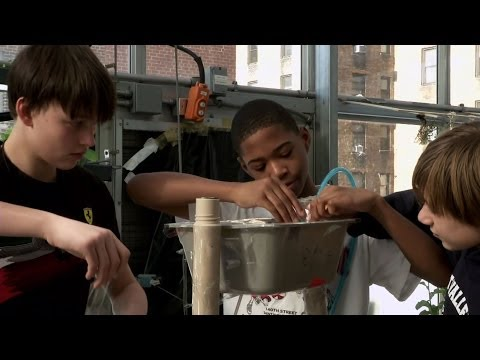 Greenhouse labs spur student learning on Manhattan rooftops
