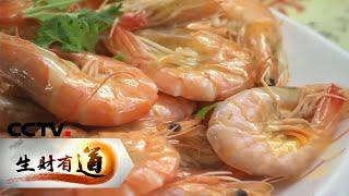 《生财有道》 20200611 海边旅游经济 美味丰富有人气  CCTV财经
