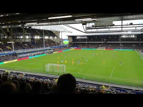 Everton v Brighton Cenk Tosun goal