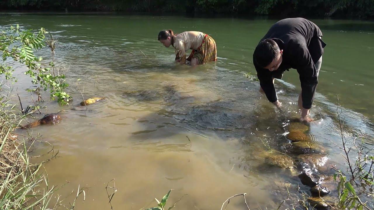 Survival Skills - Skills Catching Giant Fish At River - Catch Big Head Fish