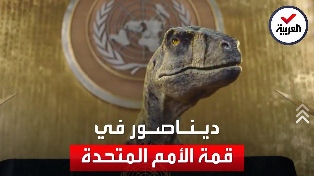 شاهد غير عادي في قاعة الأمم المتحدة  - نشر قبل 13 ساعة