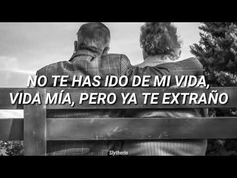 Maluma ADMV (Amor De Mi Vída) Letra