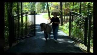 Dignified Outside - Gate Opener