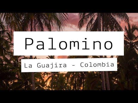 #6. ¿Como viajar barato a PALOMINO? Planes y presupuestos