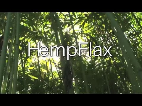 HempFlax - Nature Wins!
