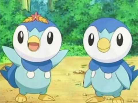 A Piplup And Torchic Tribute Youtube