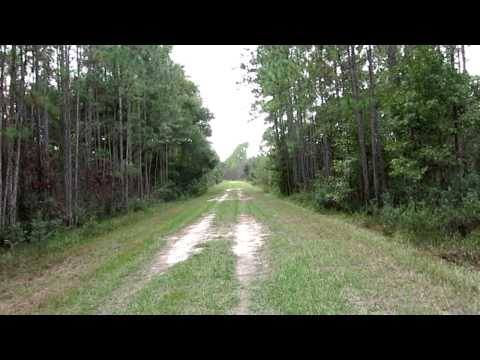 Nice day hike at John P Hall Conservation Area, Green Cove Springs, Florida 11 05 2014
