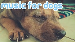 15 HOURS OF RELAXING DOG MUSIC! Reduce Anxiety and Help Dogs Sleep!