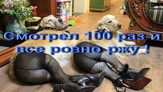 Прикол про интернет))) Жесть!!!