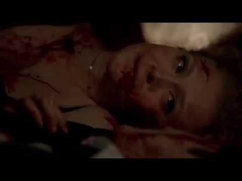 Vampire diaries 4 22 online dating