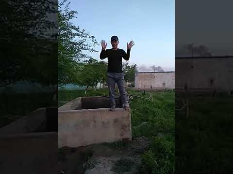 Akpar Chiyal
