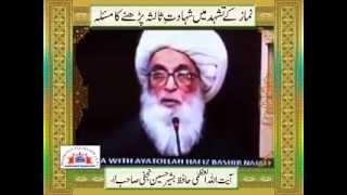 ayatullah Hafiz Bashir Hussain Najafi in Najaf (Iraq) Shahadat .e. Salsa