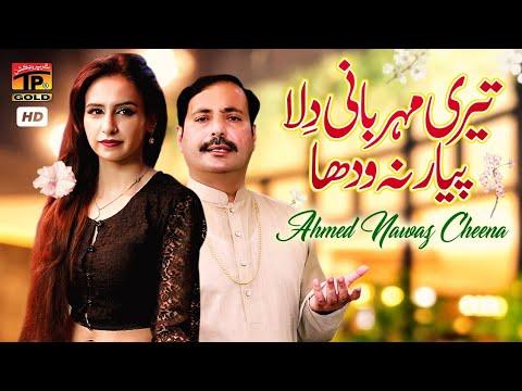 Download Agay Bahon Rullay Haan (Official Video)   Ahmed Nawaz Cheena   Tp Gold