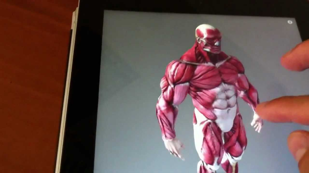 Best anatomy App for artists - YouTube