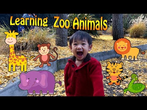 Learning Zoo Animals for kids - Play adventure at the Los Angeles  Zoo